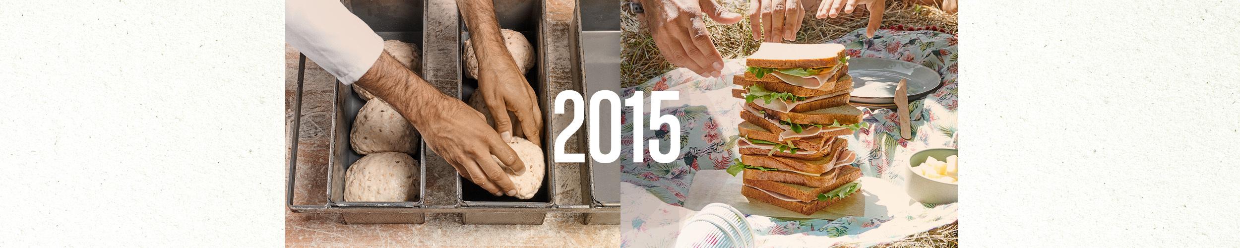 Carrousel Histoire 2015