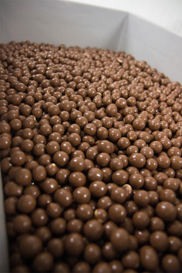 Illus Carrousel Cacao 10