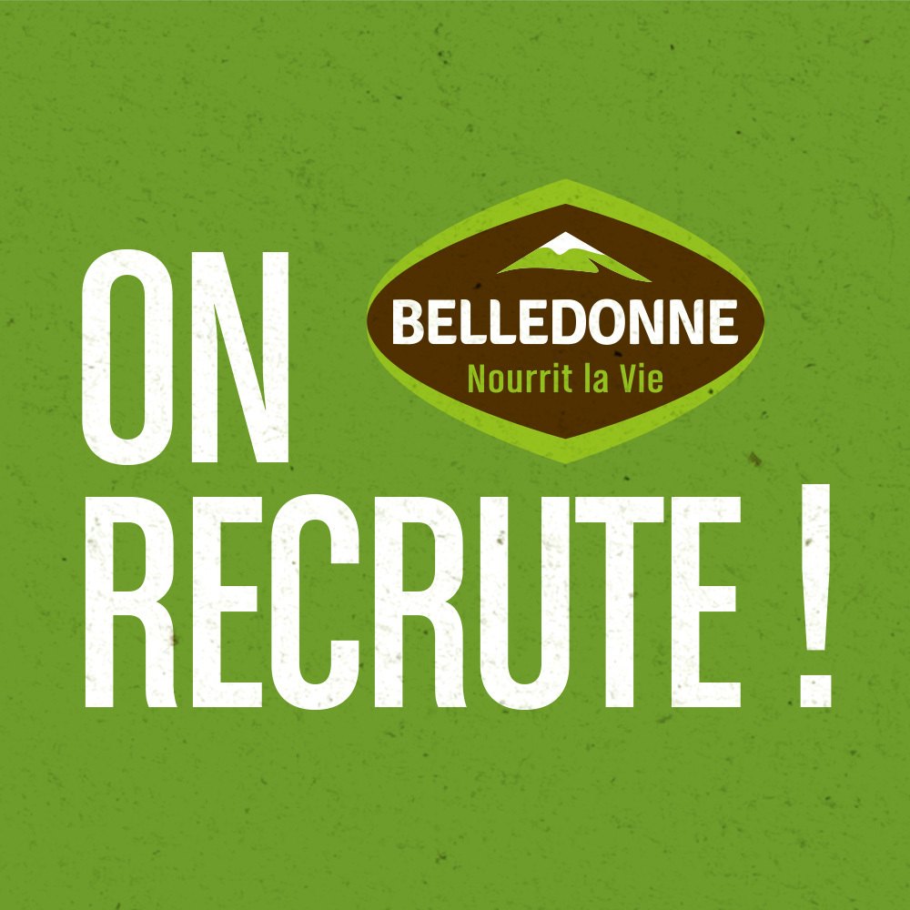 Mansonery Home Carre Recrute