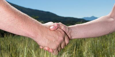 Vignettes Menus Fournilslocaux