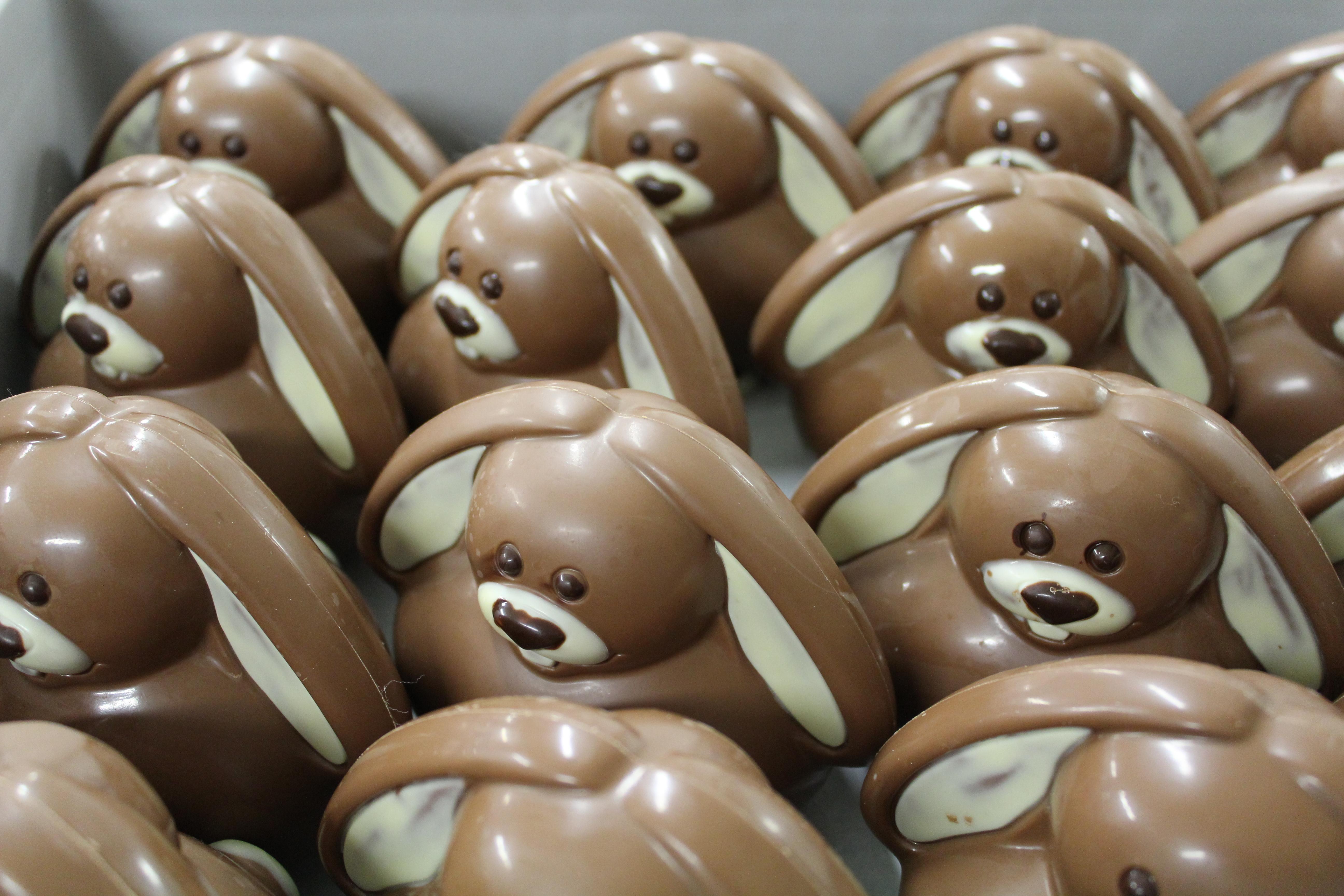 Illus Ficheproduit cacao 17