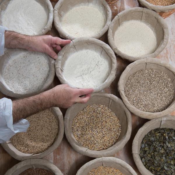 Illus Ficheproduit Boulangerie Graines 10