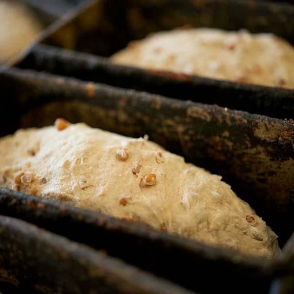 Illus Ficheproduit Boulangerie Graines 12